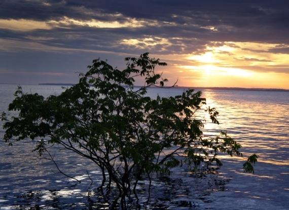 Pôr do Sol  sobre o Rio Negro em Manaus