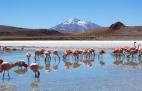 locais-experiencias-imperdiveis-na-bolivia