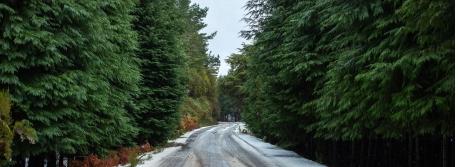 4 Programas fantásticos para uma Escapadinha de Inverno