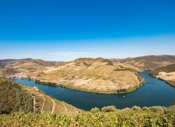 Aproveite um cruzeiro pelo Rio Douro e Tâmega